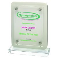 White Wood Plaque With Clear Base And Removable Front 7.75in
