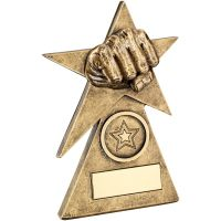 Bronze Gold Martial Arts Star On Pyramid Base Trophy - (1in Centre) - 6in