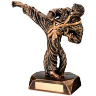 Bronze/Gold Resin Karate Figure Trophy - 7.5in