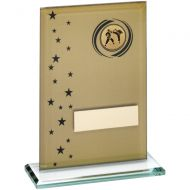 Gold/Black Printed Glass Rectangle With Martial Arts Insert Trophy - 7.5in