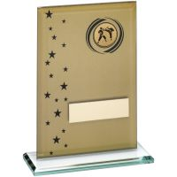 Gold Black Printed Glass Rectangle With Martial Arts Insert Trophy - 6.75in