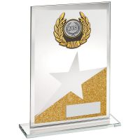 Jade Gold Silver Glass Plaque With Silver Black Trim Trophy Award - 7.25in