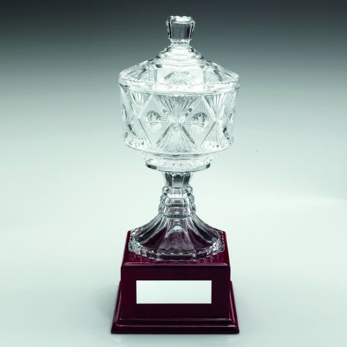 Clear Glass Cup Trophy Award On Wood Base Trophy - 13.25in