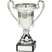Silver Plastic Lined Cup Trophy Award Trophy - (1in Centre) 7in