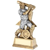 Bronze Pewter Cricket Batsman Figure With Star Backing Trophy Award - 7in