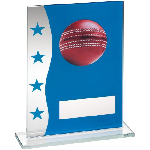 Blue Silver Printed Glass Plaque With Cricket Ball Image Trophy Award - 8in