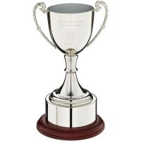 Nickel Plated Cup Trophy Award On Round Plinth With Band - 8.25in
