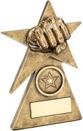 Bronze/Gold Martial Arts Star On Pyramid Base Trophy - (1in Centre) - 4in