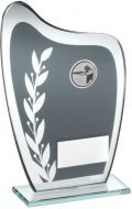 Grey/Silver Glass Plaque With Shooting Insert Trophy 7.25in