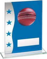 Blue/Silver Printed Glass Plaque With Cricket Ball Image Trophy Award - 6.5in