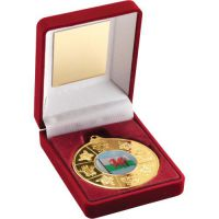 Red Velvet Box Medal Wales Trophy Gold 3.5in