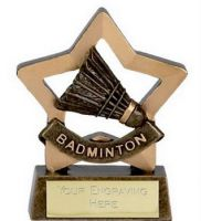 Mini Star Badminton