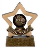 Mini Star Cricket