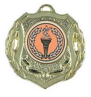 Shield Trophy Award50 Medal Gold 50mm
