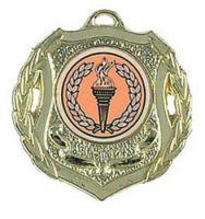 Shield Trophy Award50 Medal Gold 50mm