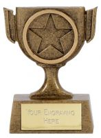 Mini Star Cup Trophy Award