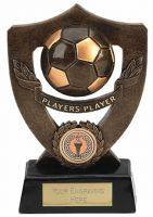 Celebration Shield Trophy Award Players Player