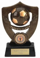 Celebration Shield Trophy Award Parents Player