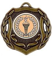 Shield Trophy Award50 Medal Bronze 50mm