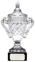 Merit Cup Trophy Award New 2013