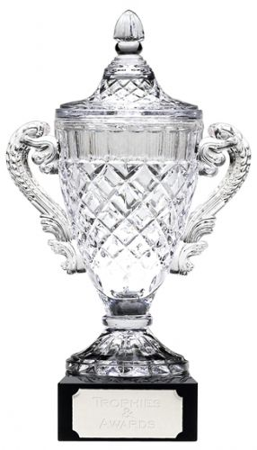 Merit Cup Trophy Award New 2013