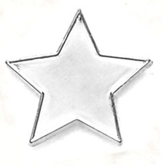 Badge Flat Star Silver (New 2010)