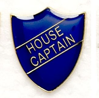 Shield Trophy Award Badge House Captain Blue (New 2010)