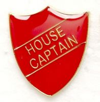 Shield Trophy Award Badge House Captain Red (New 2010)