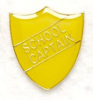 Shield Trophy Award Badge School Captain Yellow