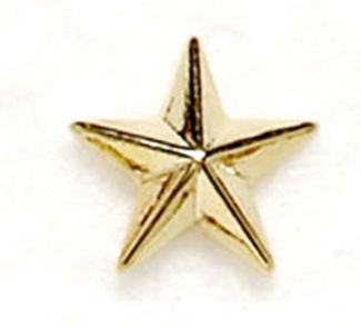 Gold Raised Star Badge Trophy Award (New 2010)