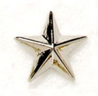 Silver Raised Star Badge Trophy Award (New 2010)