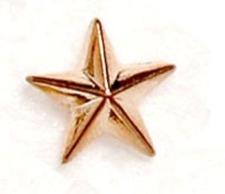 Bronze Raised Star Badge Trophy Award (New 2010)