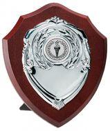 Triumph Silver Shield Trophy Award