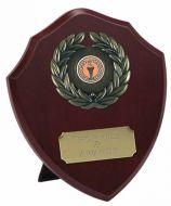 Triumph Shield Trophy Award