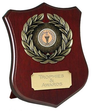 Champion Shield Trophy Award