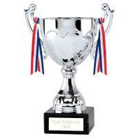 Sydney Cup Trophy Award Silver 10.5 Inch