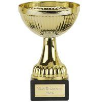Berne Gold Cup Trophy Award