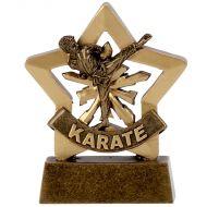 Mini Star Male Karate