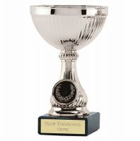 Lake Silver Cup Trophy Award 5 1 8 Inch (13cm) - New 2019