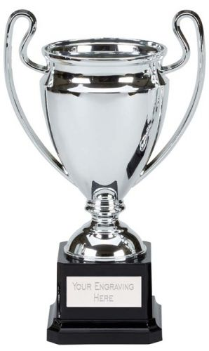 Free p/&p /& Engraving Mini Moment Cup Gold Presentation Award Trophy  6 Inch