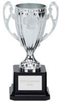 Perth Presentation Cup Trophy Award Silver 6 Inch (15cm) : New 2020