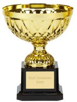 Tweed Mini Presentation Cup Trophy Award Gold 5 Inch (12.5cm) : New 2020