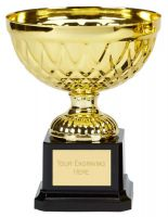 Tweed Mini Presentation Cup Trophy Award Gold 5.75 Inch (14.5cm) : New 2020