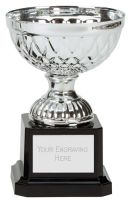Tweed Mini Presentation Cup Trophy Award Silver 4.75 Inch (12cm) : New 2020