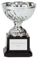 Tweed Mini Presentation Cup Trophy Award Silver 4.75 Inch (12cm) : New 2020