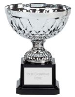 Tweed Mini Presentation Cup Trophy Award Silver 5 Inch (12.5cm) : New 2020