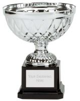 Tweed Mini Presentation Cup Trophy Award Silver 5.75 Inch (14.5cm) : New 2020