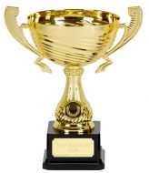 Motion Gold Presentation Cup Trophy Award 9 7/8 Inch (25cm) : New 2020