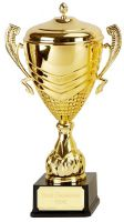 Link Apex Gold Presentation Cup Trophy Award 22 3/8 Inch (56.5cm) : New 2020