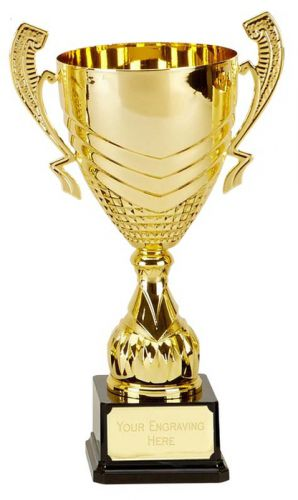 Link Gold Presentation Cup Trophy Award 13.75 Inch (35cm) : New 2020